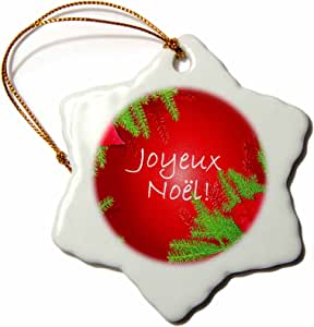 3dRose orn_8686_1 Christmas Poinsettia Joyeux Noel in Red-Snowflake Ornament, Porcelain, 3-Inch