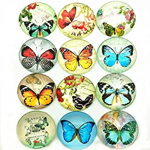 IGOGO 12 颗玻璃圆顶凸面宝石 美丽的蝴蝶 12pcs IGOGO1762360020592