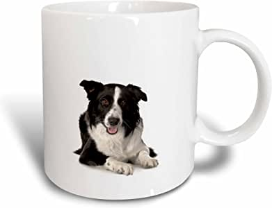 3dRose Border Collie Mug, 11-Ounce