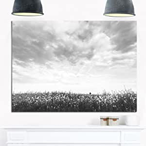 "Designart MT14176-271 黑白的强奸花园 - 大风景光面金属墙壁艺术 黑色/白色 28x12"" MT14176-28-12"