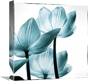 Global Gallery Debra Van Swearingen, Translucent Tulips III sq Teal' Giclee 拉伸帆布艺术微喷,15.04 x 16