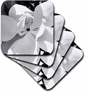 3dRose cst_19991_3 Magnolia B N W Ceramic Tile Coasters, Set of 4