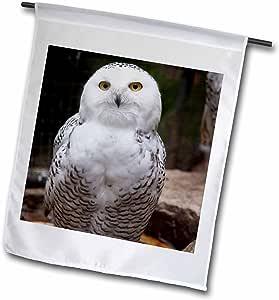PS animals–漂亮白色 snowy owl- birds- animals–旗帜 12 x 18 inch Garden Flag