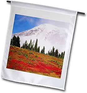 danita delimont–山地–MOUNTAIN , MT rainier 公园,华盛顿,美国–us48swe0129–stuart westmorland–旗帜 12 到 18 英寸