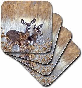 3dRose cst_88199_2 California, Mule Deer Wildlife-Us05 Bja0206-Jaynes Gallery-Soft Coasters, Set of 8