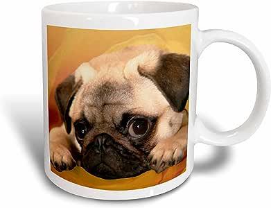 3drose Dogs Pug–Pug–马克杯 白色 15-oz