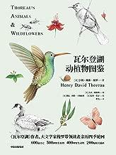 瓦尔登湖动植物图鉴:动物篇+植物篇(2册)(《瓦尔登湖》作者、大文学家梭罗带领读者爱上博物学)