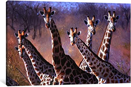 iCanvasART 9843-1PC3-40x26 Giraffes Canvas Print by Pip Mcgarry, 0.75 by 40 by 26-Inch