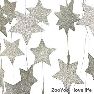 ZOOYOO 闪光纸花环五星星装饰品,适用于各种活动和派对用品。 10 英尺-2 件 银色 ZYM-CP-KZ-WJX