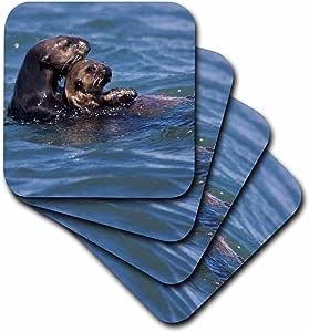 3dRose cst_88467_1 California Sea Otter, Moss Landing, California US05 JGS0199 Jim Goldstein Soft Coasters (Set of 4)