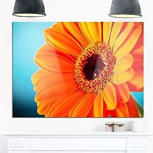 """Designart MT13821-271 橙色雏菊 Gerbera 花朵特写 - 花朵光面金属墙壁艺术 橙色 28x12"""" MT13821-28-12"""