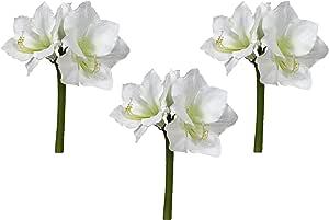 Floral Kingdom Real Touch 76.20 cm XLarge 人造芳香花,用于花瓶安排,家居/办公室装饰(3 件装) 冷白色