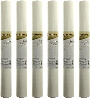 (6 件装)Pentek P1-20 沉积物滤水器(50.8 厘米 x 6.99 厘米)