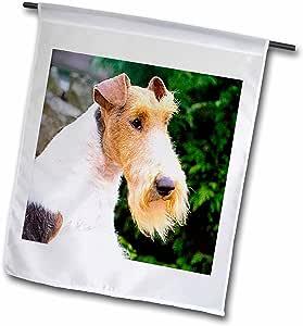 狗狐狸 terrier–狐狸 terrier–旗帜 12 x 18 inch Garden Flag