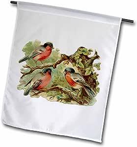 dooni Designs 复古图案–复古维多利亚鸟插图三红色 ROBINS cm A Tree–旗帜 12 x 18 inch Garden Flag