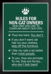 Poster Foundry ProFrames Rules for Non Cat Owners 艺术印刷品 裱框海报 14x20 inches 169391