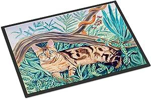 """Caroline's Treasures Cat Maine Coon Indoor or Outdoor Doormat, 24"""" x 36"""", Multicolor"""