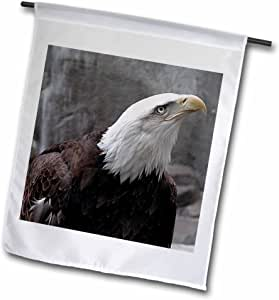BEVERLY TURNER 摄影 – EAGLE 想要 UP – 旗帜 12 x 18 inch Garden Flag