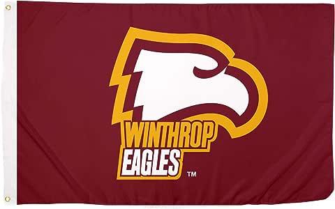 Desert Cactus Winthrop University Eagles * 涤纶室内户外旗帜