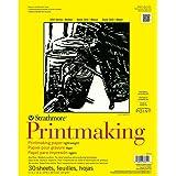 Strathmore 333-11 300 系列印刷品,重量轻,27.94cm x 35.56cm 胶订,30 张