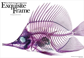 108片 拼图 棱镜艺术 新世界『透明标本』 骨骼之美 (FUYACKODI) (18.2x25.7cm)