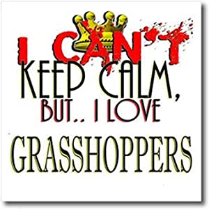 3D Rose I Cant Keep Calm-Grasshoppers 热转印,10 x 10,白色