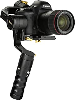 Ikan Beholder 3 轴硬币稳定器,带刻录机和无镜像摄像头,黑色 (EC1)