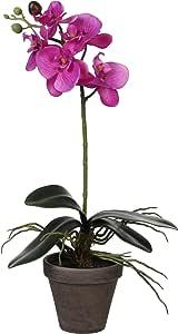 Mica 装饰涤纶 phalaenopsis 植物 IN 锅