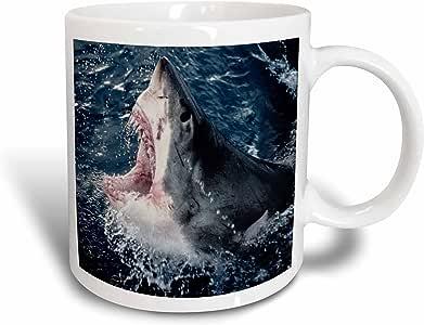 danita delimont–鲨鱼–南非,高架鲨鱼口 OPEN–马克杯 白色 15盎司