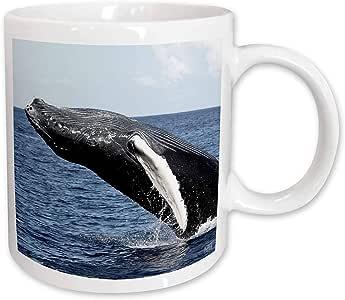 3dRose Humpback Whale Ceramic Mug, 15-Ounce