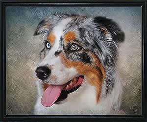 Frame USA Blue Merle 澳大利亚牧羊犬肖像-JAIJOH139686 印刷 27.99 厘米 x 33.65 厘米 Jai Johnson 出品 Flat Black Metal Frame 10.75x13.25 139686-24-15FUSA