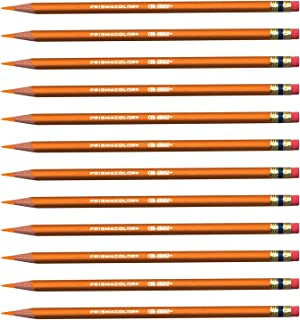 Prismacolor 可擦除彩色铅笔套装/12 橙色