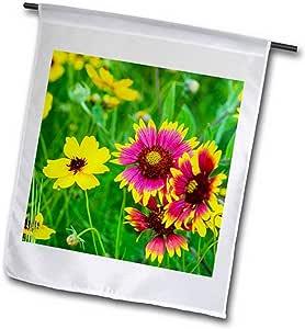 3dRose fl_207764_1 希尔乡村附近约翰逊城的草原野花 美国花园旗,30.48 x 45.72 厘米