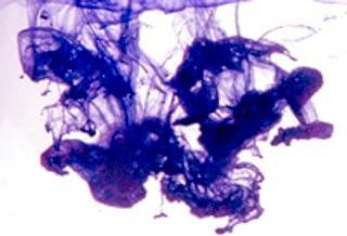 皇家紫色肥皂染 10ml - 高浓缩