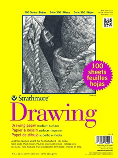 Strathmore 341-9 300 系列绘图,22.86cm x 30.48cm 中表面,每类包装 100 张
