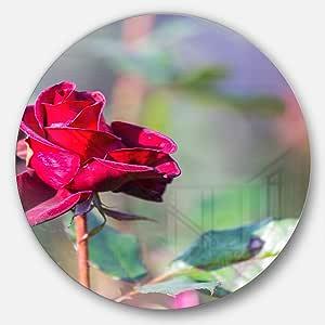 Designart 抽象红玫瑰模糊背景花盘金属墙壁艺术 红色 23X23 - Disc of 23 inch MT12340-C23