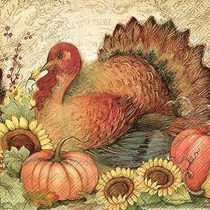 Boston International 餐巾纸 Filigree Turkey 6.5 x 6.5-Inches