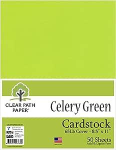 Celery *卡片纸 - 21.59 x 27.94 厘米 - 65磅 - 50 张 凯里绿 8.5 x 11 Inch - 50 Sheets CELERYGREEN-65-811