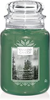 Yankee Candle 经典大号罐 Evergreen Mist Large 1623710E