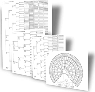 Big Genealogy Charts 套装,含 10 代、8 代和 6 代谱图和 9 代祖先风扇图(4 张)
