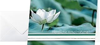 Sigel DS006 同情卡片 白色 Amaryllis 10 件套,含信封空白文字 Condolence