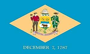 Heath Outdoor Products 23061 2 英尺 x 3 英尺 Delaware 旗帜
