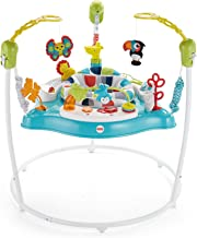 Fisher-Price Jumperoo,Color Climbers [亞馬遜*]