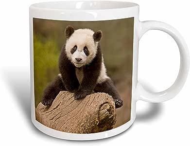 3drose danita delimont–熊–中国, wolong 熊猫 RESERVE ,婴儿熊猫 Bear ON stump-as07aga0001–爱丽丝花环–马克杯 白色 15盎司
