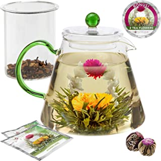 Teabloom Perfect Pour 鹅颈水壶 绿色 Blooming Oasis Teapot Kettle