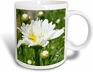 3dRose Dancing Daisy - Ceramic Mug, 11-Ounce (mug_23613_1)