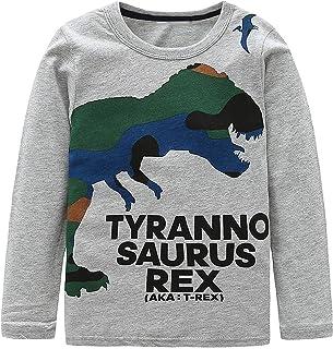 DDSOL 幼童男孩长袖 3D T 恤恐龙棉质上衣 T 恤儿童尺码 2-7T