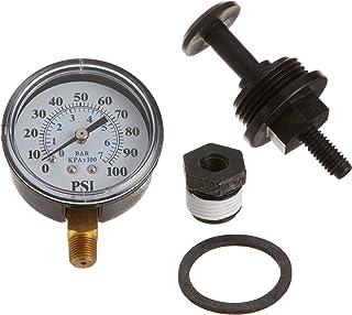 Pentair J198-20 压力计量调节器替换池和 Spa 泵