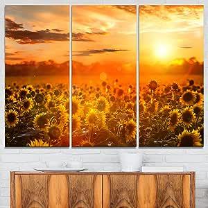 "Designart 5 件卡比利亚风景中的盛开场照片帆布艺术印刷品 黄色 36x28"" - 3 Panels PT9575-3P"