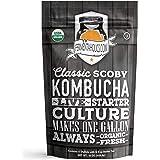 Kombucha SCOBY & Starter 茶 - Live Starter Culture - 新鲜 - 425.24 克
